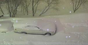 Uyumadan önce aracının fotoğrafını çekti – 8 Saat sonra gördüğüne şok oldu