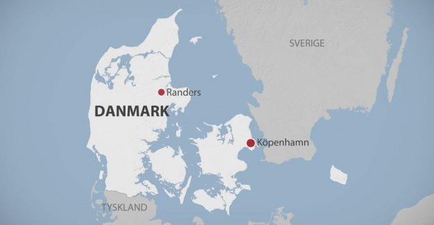 Danimarka'da bir evde 6 kişi ölü bulundu