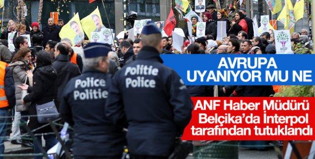 İnterpol PKK gazetecisini tutukladı