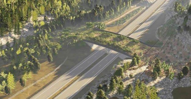İsveç benzersiz bir köprü inşa edecek