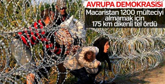 Macaristan'ın mülteci korkusu: Sınıra jiletli tel çekti