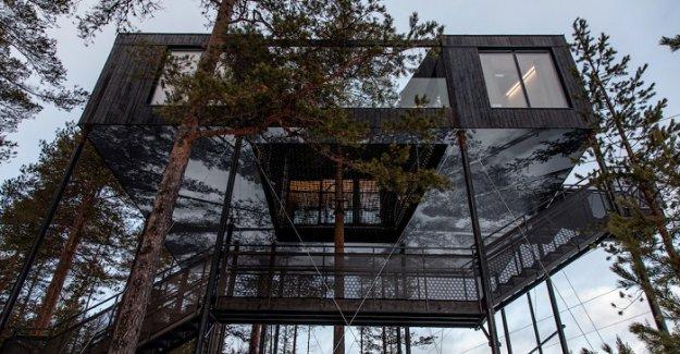 """Nefes Kesen Manzarası ve Lüks Olanaklarıyla İsveç'in Ağaç Oteli: """"7th Room"""" 20 dakika önce"""