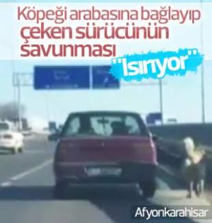 Trafikte köpeğe işkence