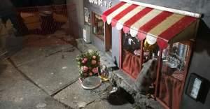 İsveç'te Sadece Farelerin Kullanabileceği Küçüklükte Mağazalar Açıldı