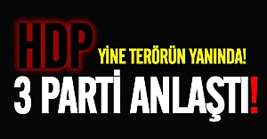 HDP hariç, 3 partiden teröre ortak tepki!