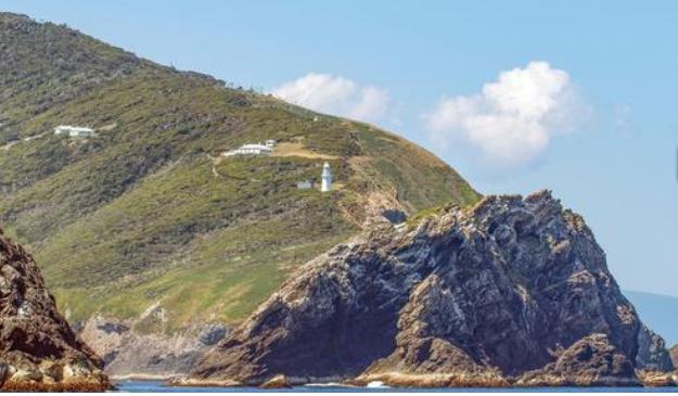 Ayrıca 186 hektarlık minik bir ada olan Maatsuyker, 'Vahşi Yaşam Dünya Mirası' olarak kabul ediliyor.