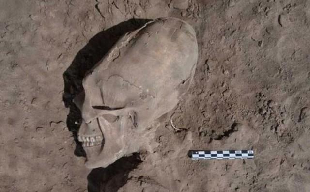 Komplo teorisyenleri ve UFO uzmanları uzun kafataslarının uzaylılara ait olduğunu ileri sürer. Araştırmacılar ise böyle bir şey olmadığını, bu kafataslarının yapay şekilde uzatıldığını belirtiyor. Current Anthropology'de bu konuyla ilgili yepyeni bir makale yayınlandı.