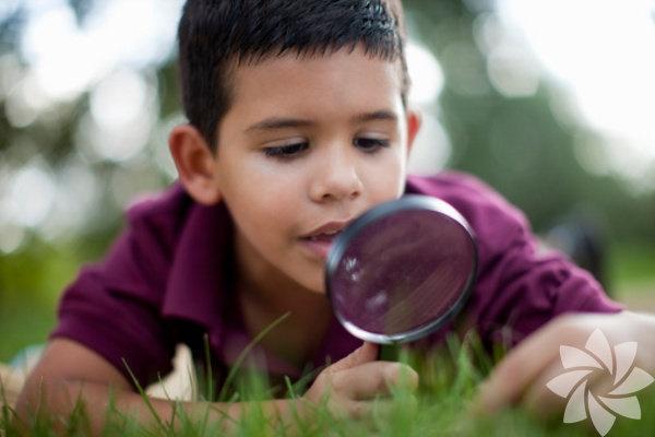 Merak   Uzmanlar, ebeveynlerin çocuklarını merakları ve yeni fikirler ve şeyler keşfetmelerini desteklemesi gerektiğini belirtiyor. Bilgi peşine düşmek önemlidir. Sorular sorarak hobilerini ve ilgi alanlarını destekleyin ve yeni beceriler öğretmek ve entelektüel merakı geliştirmek için eğitim gezileri düzenleyin.