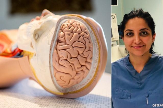 """Araştırmacılar, Uppsala'daki Üniversite Hastanesinde tedavi gören covid-19 ve nörolojik semptomları olan hastaları inceledi. Çalışma European Journal of Neurology'de yayınlandı.  """"Hasarın nasıl ortaya çıktığını hala bilmiyoruz"""" diyen beyin cerrahı ve Uppsala Üniversitesi'nde araştırmacı olan Elham Rostami, çoğu vakada koronavirüsün nörolojik semptomların ve sinir hücrelerinde meydana gelen hasarın doğrudan bir nedeni olmadığını söyledi."""