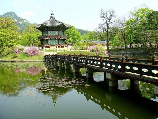 21-Güney Kore- Yüzde 19,9
