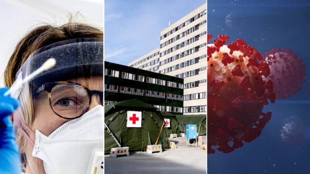 İsveç'te koronavirüs vaka ve can kayıpları haftanın son iş gününde yine artış gösterdi. Halk Sağlığı Kurumu günlük basın toplantısında açıklanan verilere göre, 84 yeni can kaybı ve 749 doğrulanmış yeni vaka bildirdi.  Tespit edilen yeni vakalarla birlikte ülke genelindeki toplam vaka sayısı 36 bin 476'ya yükselirken, ülkede covid-19 bağlantılı can kayıpları 4 bin 350'ye yükseldi.  Hastanelerde tıbbi tedavi gerektiren hasta sayısı 2 bin 48 olurken, ülkede bazı bölgelerdeki ani artış endişe yaratıyor.  Koronavirüs nedeniyle dünya genelinde toplam vaka sayısının 5.8 milyon bulduğu, covid-19 bağlantılı ölümler ise 360 bine ulaştığı söylendi.  Yaşanan vakaların 1.4 milyon Avrupa kıtasında ve Avrupa'da şuana kadar yaşamını yitiren insan sayısı 164 bine ulaştı.