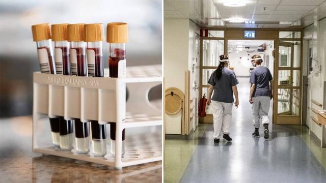 Gävleborg bölgesinde Brezilya varyantı olan koronavirüs vakası tespit edildi.  Bölge yönetiminin internet sitesinde yer verilen bilgiye göre, Brezilya varyantının küçük bir küme salgını bulundu.  Toplam dört vaka tespit edildi. Bölgeye göre, Brezilya virüs varyantı İsveç'te ilk kez keşfedildi.