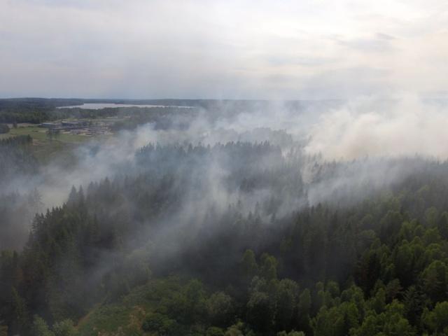 İsveç'te olası orman yangınlarının büyük zarar verebileceğinden endişe eden uzmanlar geçtiğimiz günlerde İsveç genelinde ağaçlık alanlarda mangal yapılmaması hususunda uyarılarda bulunmuş ve tüm vatandaşların bu uyarılara uyması gerektiği vurgulanmıştır.