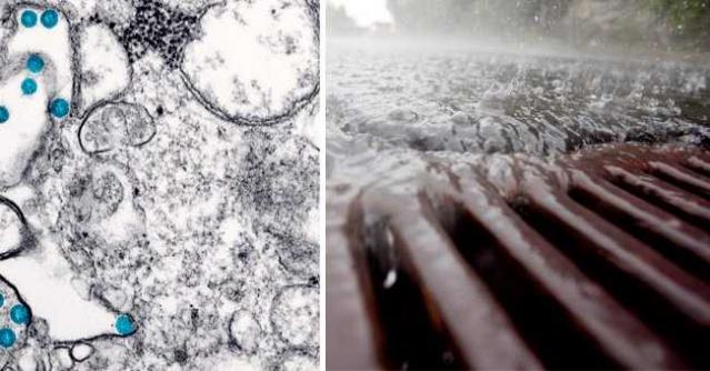 Stokgolmdagi oqava suvlarda yuqori darajadagi koronavirus aniqlandi