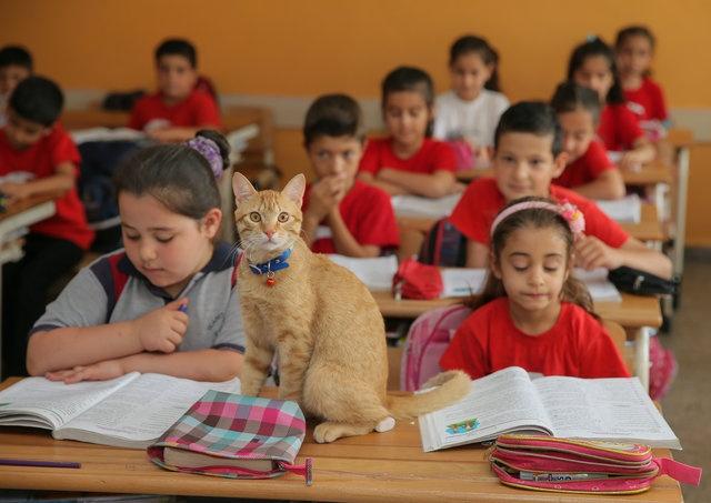 İşte Tombi'nin hem okul günlerinden fotoğrafları... (İHA)