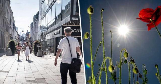 """Tüm dünyada olduğu gibi İsveç'te 2020 yılını bir çok yönüyle büyük sıkıntılarla geride bırakmak üzere, başta pandemi olmak üzere, birçok farklı olayın ülke gündemini ciddi şekilde meşgul ederken, küresel ısınmadan gelecekte en fazla etkilenebilecek ülkelerin başında geliyor.  2020 yılı İsveç tarihinin ortalama en yüksek sıcıklağını da yaşatan yıl oldu.  SMHI'ye göre yıllık ortalama sıcaklık 7,5 derece arttı.  İstatistiklere göre, bu yılın ortalama sıcaklığı 160 yıldır ölçülen en yüksek sıcaklıktır.  SMHI iklimbilim profesörü Erik Kjellström, """"Ülke genelinde nispeten eşit olarak dağılmış 35 istasyondan veri derledik"""" diyerke 1860'lara kadar uzanan bilgiler sahip olduklarını ve bunları kıyaslayarak elde ettikleri verileri paylaştı.  Yapılan değerlendirme ve ölçümlerden çıkan sonuç, +7,5 dereceye yakın bir yıllık ortalama sıcaklık elde edildi.  Bir önceki en yüksek değer 2014'te elde edildi bir yılda yaklaşık 0,5 derece yükselmişti. O zamanlar ortalama sıcaklığın 6,9 derece olduğu söylendi."""