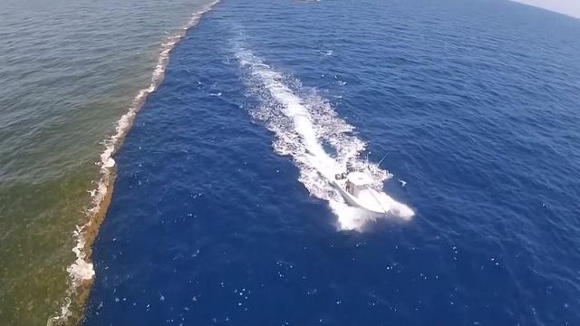 California-Santa Cruz Üniversitesi'nde okyanus bilimleri profesörü olan Ken Bruland'a göre aslında Alaska Körfezi'ndeki su kütleleri birbiriyle karışıyor. Sadece tamamen karışmaları biraz zaman alıyor. Bir süre sonra suyun tortu oranına göre görüntü yok oluyor.