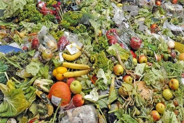 7. İhtiyacınızdan fazla yiyecek almayın   Çürümüş yiyecekleri çöpe atmakla paranızı çöpe atmak arasında fark yok.