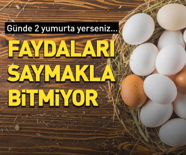 Yumurtanın faydaları saymakla bitmiyor. Yapılan araştırmalara göre, düzenli olarak her gün yumurta yenildiğinde inanılmaz fayda sağlıyor.