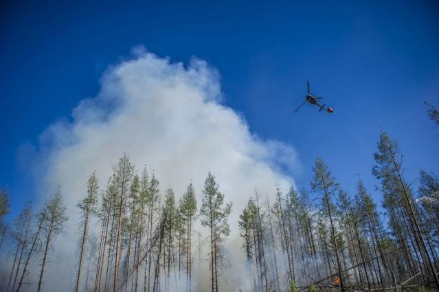 Yangın söndürme ekibinde görev alan Tommy Wållberg, Västmanland bölgesinde çıkan yangının şiddetlendiği ve dört yıl aradan sonra aynı bölgede yaşanan en büyük yangın ifadelerini kullandı. Bölgede 2014 yılında büyük bir yangın olayı yaşanmıştı.