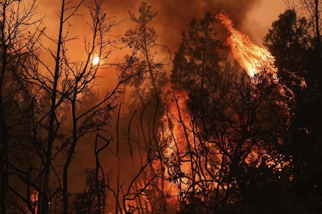 ABD'de sıcak hava dalgasının etkisinde kalan California eyaletinde, düşen yıldırımlarla alevlenen yangınların boyutu, eyalet tarihinin en büyüklerinden biri haline geldi.  California genelinde, çoğu kuzey kesimlerde olmak üzere irili ufaklı 560 yangın devam ediyor.
