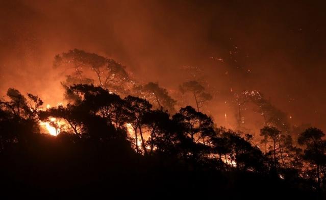 """Antalya'nın Manavgat ilçesinde başlayan orman yangını 5 gündür devam ediyor. Yangında can kaybı 8'e yükseldi. Yangında hasar gören evde bir çiftin cansız bedeni bulundu. Muğla'nın Bodrum ilçesinde Gökpınar, Yukarı ve Aşağı Mazı mahalleleri ile Armutçuk mevkisinde devam eden orman yangınlarını söndürme çalışmaları aralıksız sürüyor.  Bakan Pakdemirli Twitter hesabından yaptığı son paylaşımda """"#OrmanınKahramanları büyük bir özveri ile mücadeleye devam ediyor."""" dedi."""