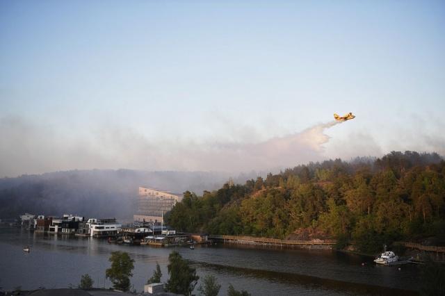 Dokuz hektarlık alanın etkilendiği belirtilen yangına havadan ve karadan müdahaleler sürüyor.