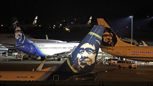 Amerika Birleşik Devletleri'nin Alaska eyaletinde, Cordova'dan Yakutat'a giden yolcu uçağı piste indiği sırada bir boz ayıya çarptı.  Alaska Havayollarına ait Boeing 737-700 tipi uçağın sol motorunda hasar meydana gelirken boz ayı hayatını kaybetti.  Alaska Eyaleti Ulaştırma Bakanlığı uçağın inişinden on dakika önce pistin temizlendiği ve kontrol edildiği sırada herhangi bir vahşi hayvana rastlanmadığını açıkladı. Fakat uçağın inişi sırasında pilotların iki boz ayının pisti geçtiğini kule yetkililerine bildirdiğini ifade etti.