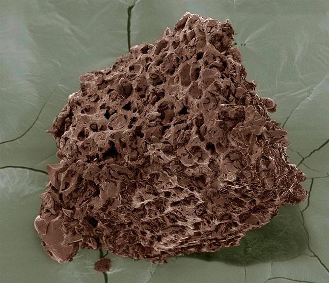 Resimde gördüğünüz taş parçasına benzeyen o şeyin ne olduğu hakkında bir fikriniz var mı?