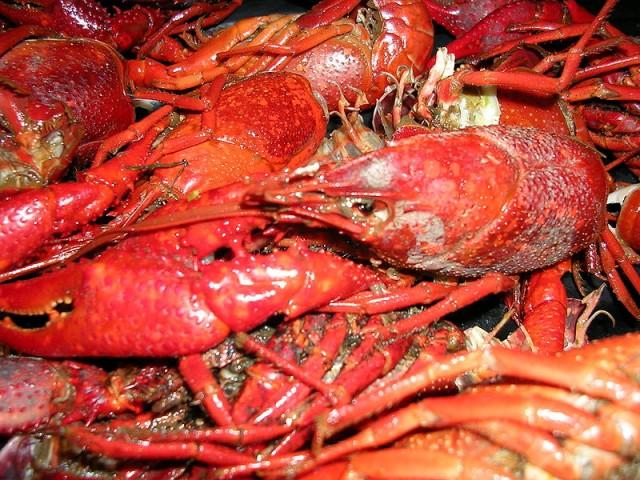İsveç'teki yemek kültürü nasıldır?  İsveç'te deniz ürünleri ağırlıklı bir mutfak söz konusu ve deniz ürünlerinin her çeşidini bulabilirsiniz. Özellikle somon balığı çok güzel, hering balığıda bulunuyor ve bunu sabah kahvaltılarında bile kullanıyorlar. Günün her saati deniz ürünleri yemek mümkün. Deniz ürünleri sevmeyenler için özellikle Stockholm çok kozmopolit bir şehir.  Dünyanın değişik mutfaklarından örnekler görebiliyorsunuz ve bunların arasında Türk mutfağı da var. Bizim döner kebapımızı çok sayıda köşede görmek mümkün. Kebap kültürüde Türkler sayesinde İsveç'e taşınmış durumda. Bunun dışında içecek olarak ta aquamit? isimli İskandinavya genelinde bulunan yaşam suyu dedikleri tahılın damıtılmasıyla üretilmiş bir içecekleri var bu da en popüler içeceklerinden bir tanesi mutfak kültürünün bir parçası olarak.  Kaynak bu içerikler: Ali Ahmet Dönmez'in makalesinden derlenmiştir.