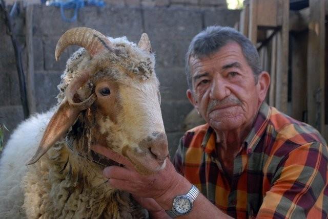 Burdur'un Menderes ilçesinde kurbanlık alan adam hayrete düştü