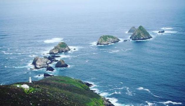 Maatsuyker Adası'nda maksimum rüzgar saatte 176 kilometreye kadar ulaşabiliyor ve yılın da neredeyse 250 günü yağış var.