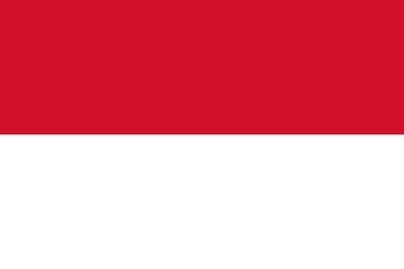 Endonezya (Ortalama internet hızı 3 Mbps)