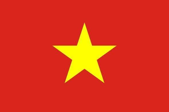 Vietnam (Ortalama internet hızı 3.4 Mbps)