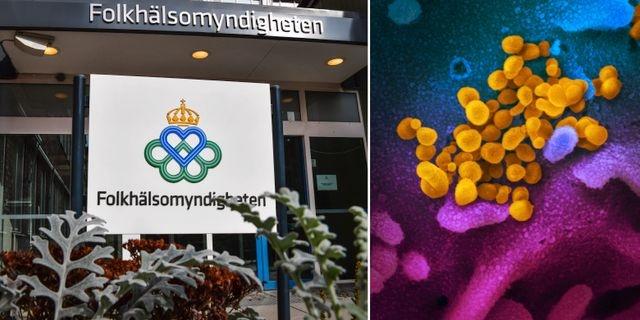 İsveç'te koronavirüs nedeniyle ülke genelinde tespit edilen toplam vaka sayısı 21 bin 92'ye yükselirken, Valborg olması nedeniyle bugün bilgilendirme toplantısı düzenlenmedi.