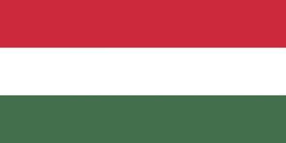 Macaristan (Ortalama internet hızı 10.7 Mbps)