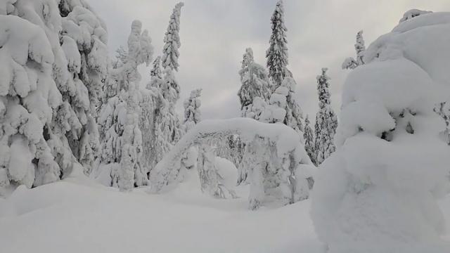 İskandinavya yarımadasındaki ülkede kar yağışı sonrası güzel görüntüler oluştu.  İsveç'in kuzeyinde büyüleyen görüntüler kayda geçti.