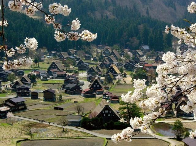 Japonya  90 gün vizesiz.