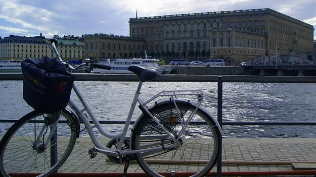 Tüm bunların dışında Stockholm'ün benim için farklı yönü güvenliği ve insanlarının saygısı oldu. Gece geç saatlerde havalimanından şehir merkezine geçerken yolda tek başına bisiklet süren bir kız görmüştüm. Saat gece 4 civarıydı. Onun şaşkınlığını üzerimden atamamışken, kalacağım hostele yürüdüğüm sırada küçük bir parkta fotoğrafta yer alan tavşanları gördüm. O anlarda aklıma Türkiye'de emniyet şeridinde bisiklet sürerken arabanın çarpması sonucu hayatını kaybeden bisikletçi ve İstanbul/Gülhane Parkı'nda bulunan hayvanları yerli halkın beslemesi sonucu hayvanların zarar görmesi ve Darıca'ya götürülmesi olayı gelmişti.  81 yaş ortalaması ile dünyada en uzun yaşam oranına sahip İsveç'i, bu konuda yaptığı çalışmalardan ve insana değer vermesinden dolayı ben de tebrik ediyorum. Daha önce hiçbir yazımda bir şehri bu kadar övmemiştim. Yaşanılacak şehir ne demekmiş, Stockholm bana onu gösterdi…