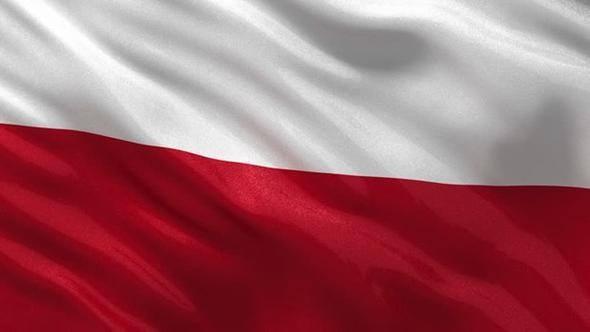 Polonya (Ortalama internet hızı 10.6 Mbps)