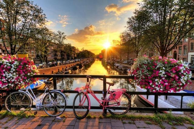 """Çevre dostu ve sağlıklı ulaşım aracı bisiklet kullanımını teşvik etmek amacıyla Birleşmiş Milletler (BM) Genel Kurulu 3 Haziran'ı """"Dünya Bisiklet Günü"""" ilan etti. Almanya merkezli Coya, """"Küresel Bisiklet Şehirleri 2019"""" listesinde dünyanın en bisiklet dostu şehirleri sıraladı. İşte dünyanın en bisiklet dostu şehirleri...  Çevre dostu ve sağlıklı ulaşım aracı bisiklet kullanımını teşvik etmek amacıyla Birleşmiş Milletler (BM), 3 Haziran'ı """"Dünya Bisiklet Günü"""" ilan etti. Bu günde, toplumda bisiklet kültürünün gelişmesini destekleyecek uluslararası ve yerel etkinliklerin düzenlenmesi teşvik ediliyor.  Ayrıca BM, üye devletlere, yol güvenliğinin iyileştirilmesi, yaya ve bisikletlilerin güvenliğini sağlayacak önlemlerin alınması, ulaşım altyapılarının planlanması için çağrıda bulunuyor.  Bisiklet kullanımı, insan sağlığına yararının yanında dünyadaki artan araç sayısınına bağlı artan fosil yakıt tüketiminin küresel ısınmaya etkisini düşürmede önem taşıyor.  Dünya Sağlık Örgütü'ne göre, bisiklet, kalp rahatsızlıkları, kanser, diyabet gibi hastalıkların riskinin azalmasının yanı sıra özel araç alamayanlara bir ulaşım aracı olanağı sunuyor."""
