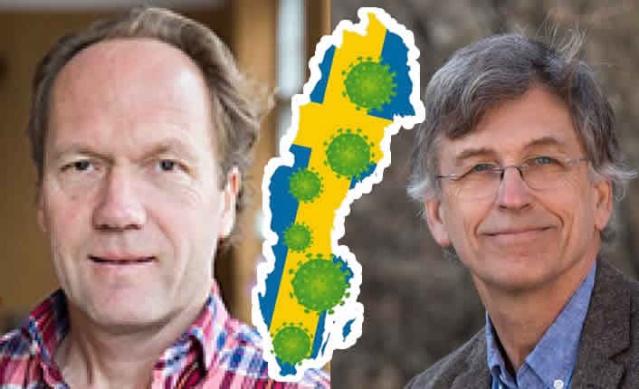 """Teorik biyoloji profesörü Uno Wennergren ve matematik profesörü Tom Britton İsveç'te koronavirüs salgını nedeniyle yaşanacak can kayıplarıyla ilgili tahminlerde bulundu.  Her ikisi de İsveç'te covid-19'daki toplam ölüm sayısının bir tahminini hesapladılar ve tahminlerde ortak noktada buluştular.  Uno Wennergren """"Benim hesaplamam, 10 bin ile 20 bin arasında kişi öleceğini söylüyor"""" dedi."""
