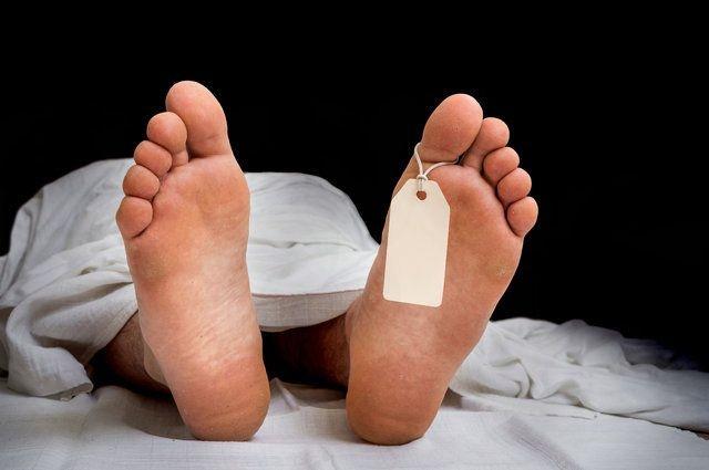 Ölümden sonra beynin çalıştığını iddia eden bir diğer bilgi de Daily Mail'de yer alan habere göre; ABD'de Langone Tıp Fakültesi Yoğun Bakım ve Reanimasyon Bölümü Başkanı Dr. Sam Parnia'dan geldi. Dr. Parnia'ya göre ölümden sonra beyin çalışmaya devam ediyor.