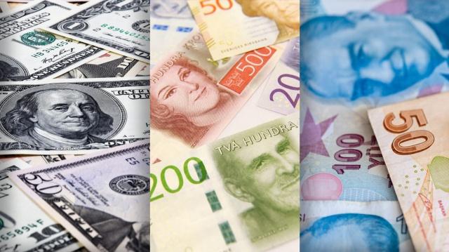 Türkiye'deki döviz dalgalanması artarken, İsveç kronu TL karşısında tarihinde ilk kez aynı seviye yaklaştı