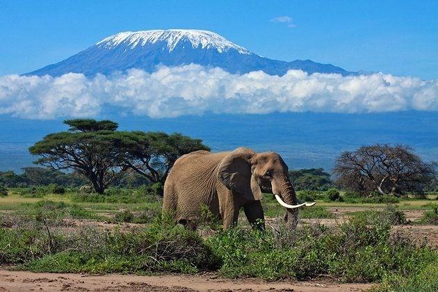 Tanzanya  Kapıda vize uygulaması var.  Tanzanya, sınır kapılarında ve havalimanlarında 50 ABD doları karşılığında tek girişli, 90 gün vize veriyor.