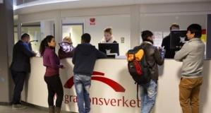 Migrationsverket: İş göçü ve sığınma talepleri yarı yarıya azaldı