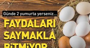 Günde iki yumurta yerseniz… Faydaları inanılmaz