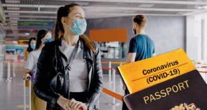 Avrupa Birliği, seyahat özgürlüğü için 'aşı pasaportu'nu tartışıyor