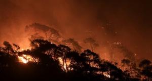 Yangınlarda son durum: Bazı mahalleler boşaltıldı, girişler yasaklandı