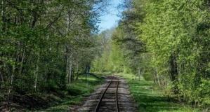 İsveç'in büyüleyen tren yolları